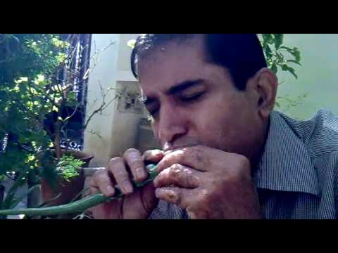 How to eat Aloe Vera(Guar Patha) properly...