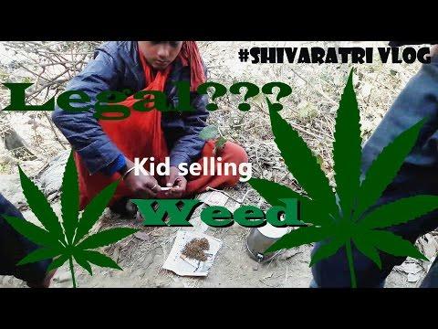 Maha Shivaratri Vlog   Weeds everywhere   Travel vlog   Motovlog   Nepal