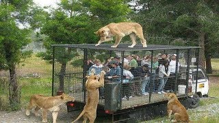 Most Dangerous Tourist Destinations