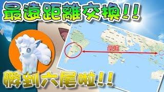 【精靈寶可夢GO】POKEMON GO|最遠距離交換!孵到阿羅拉6尾啦!!