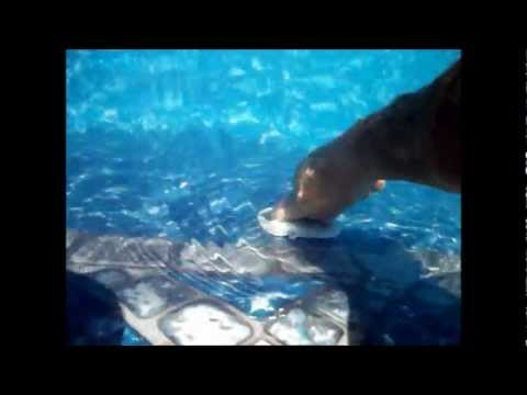 How to winterize an inground pool In fifteen minutes