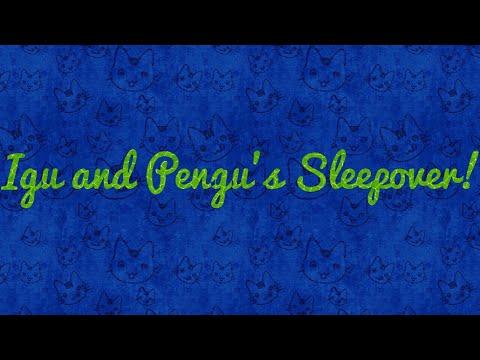 Igu and Pengu's Sleepover!!!