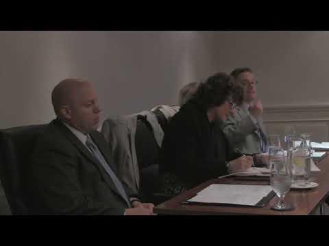 USA Surrogacy for Irish #1: Background and Process. Ireland seminar May 2010