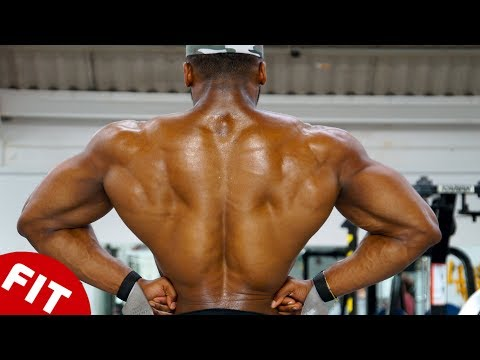 HOW TO BUILD A MASSIVE BACK