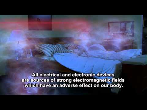 Human exposure to the effects of the electromagnetic field