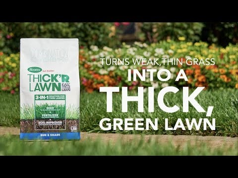 How to Use Scotts® Turf Builder® THICK'R LAWN™ for a Thick, Green Lawn