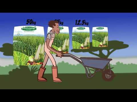 Shamba Shape Up Sn 08 - Ep 02 Watermelons, Green Maize, Dairy Cows (English)