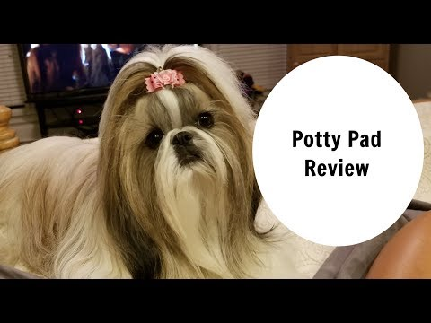 POTTY PAD REVIEW