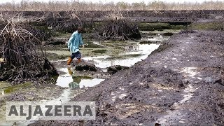 UK court hears appeal in Shell Nigeria oil spill case