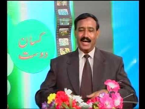 Kissan dost special-1.Pakistan Dr.Ashraf Sahibzada