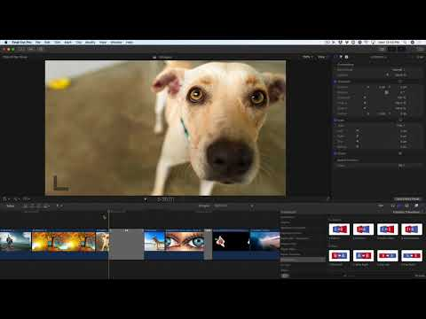 Zooms in Whips 2.0 for FCPX