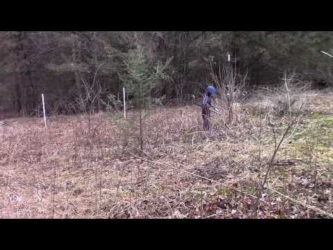 Hanging Electric Fence for Pastured Pigs