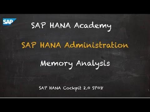 [2.0 SP08] SAP HANA Administration: Memory Analysis - SAP HANA Academy