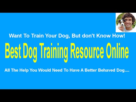 Stop dog barking - How to stop your dog barking in the garden or else where