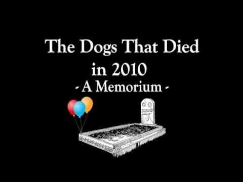 MURDERFIST presents The Dogs Who Died in 2010