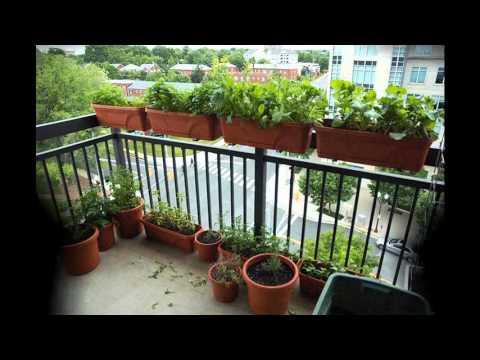 [Garden Ideas] apartment gardening ideas