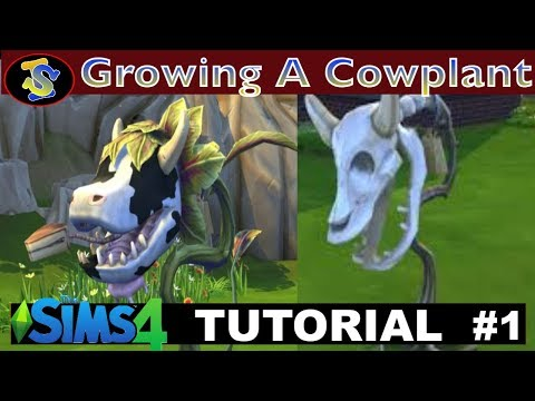 The Sims 4 Tutorial How to Grow a Cow Plant