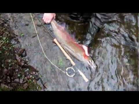 Fly Fishing:  Oregon's North Coast Native Winter Steelhead