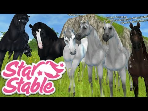 🔴 NEW CODE!!!! Wild Horses on The Loose!!! | Star Stable Online Live Stream