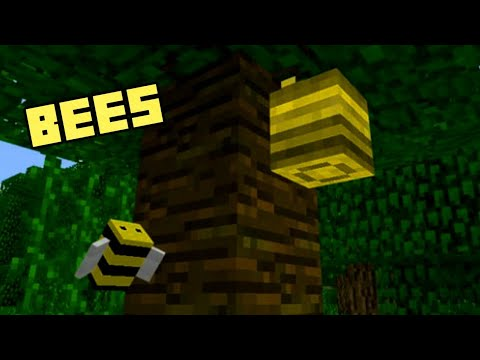 Bees in Minecraft Bedrock Edition!! / Bumble Bee Addon