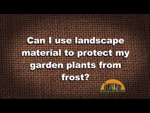 Q&A – Can I use landscape material to protect from frost?