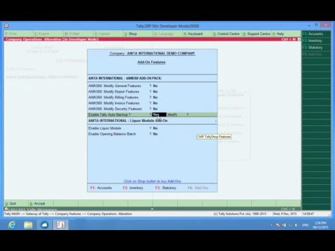 Tally Add Ons : Auto Backup of Tally.ERP9 Data | Daily Zip Backups