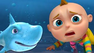 TooToo Boy   Baby Shark Photography   Cartoon Animation For Children   Videogyan Kids Shows