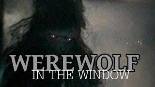 Werewolf In The Window