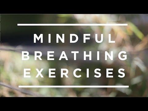 Mindful Breathing Exercises [Jeffrey Schwartz]