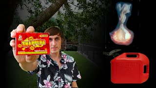 Huge Snapper Vs. Gasoline - Can they cause a fire? - SMS#3