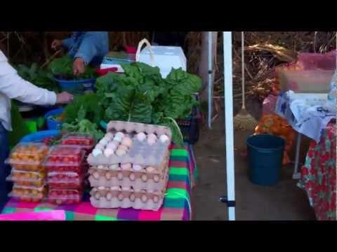 25 de febrero - San Jose del Cabo Mercado Organico