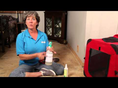 Apple Vinegar Spray for Dog Chewing : Dog Training & Basic Obedience