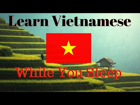 Learn Vietnamese While You Sleep 😀 130 Basic Vietnamese Words and Phrases 👍 English/Vietnamese