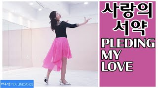 Pleding My Love Line Dance (사랑의 서약 라인댄스)