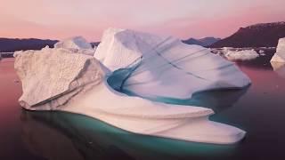 Download बर्फ के नीचे पाया गया सबसे रहस्यमयी चीज | Animals Found FROZEN In Ice! Video