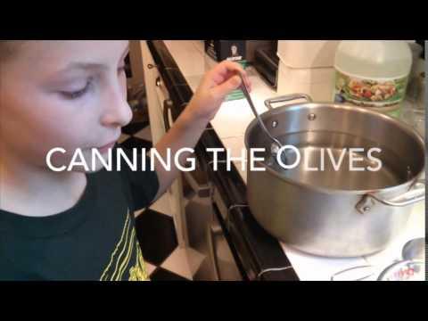 How to Brine Olives, Mediterranean Style