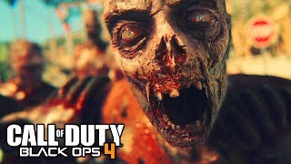 """Call of Duty : Black Ops 4 Zombies """"Official"""" Leak Confirmed! (NEW LEAKED DETAILS)"""