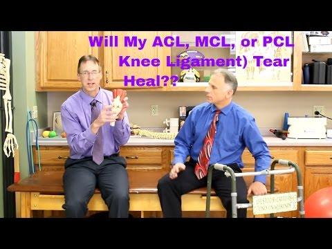 Will my ACL, MCL, or PCL (Knee Ligament) Tear Heal?? Surgery??