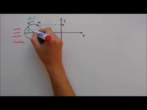Etude cinématique du mouvement oscillatoire