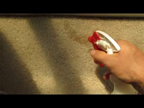Removing Water Stain (Browning)
