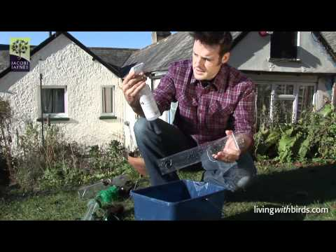 Stay Fresh - How to keep your bird feeders clean