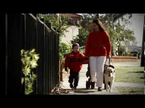 Guide Dogs TV Ad 2010