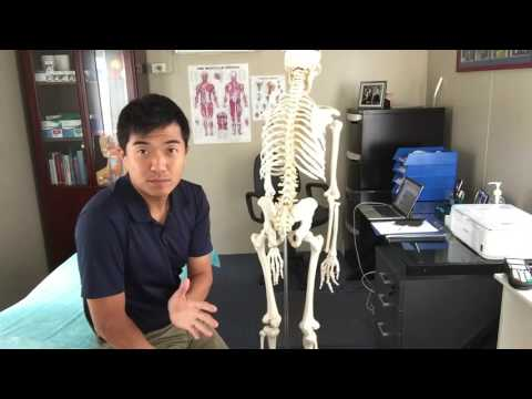 Are you suffering hamstring pain that's won't go away - Here's an easy explanation