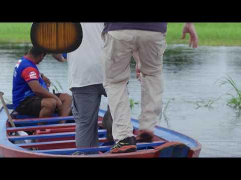 101 Earthworks: Animal Collective: The Amazon Chapter 5