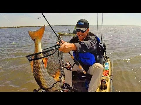 Kayak Fishing: Redfish Goes Crazy in the Grass