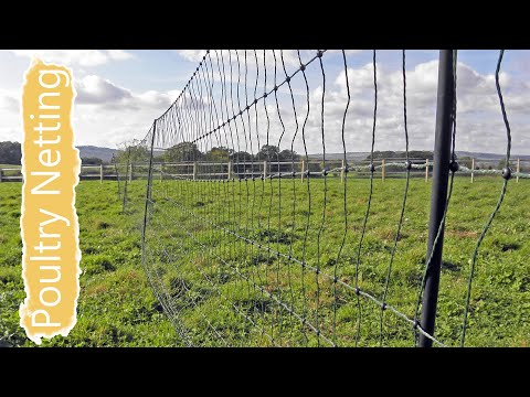How to Install Poultry Netting by Flyte so Fancy