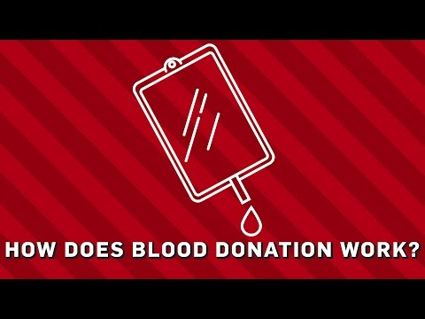 How Does Blood Donation Work? | Brit Lab