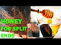 How To End Split Ends Permanently Top Home Remedy Instant Results mp3