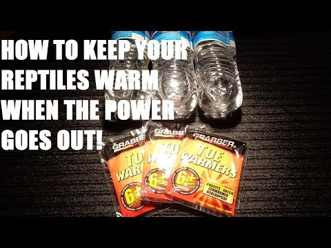 (Requested reupload) How to keep your snakes warm when your power goes out.