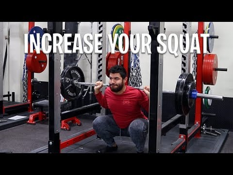 ZOO CULTURE GYM | WORKOUTS FOR STRONGER SQUAT | INCREASE SQUAT MAX